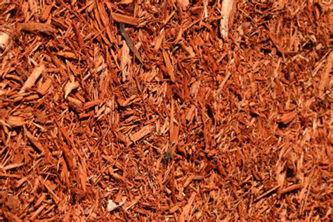 which mulch is best top 28 which type of mulch is best types of mulch major mulch installations orlando mulch