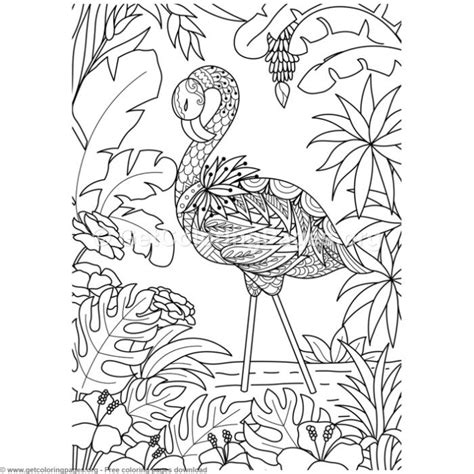 zentangle flamingo bird coloring pages