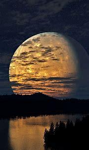 Night Sky Moon Trees River Reflectio Smartphone Wallpapers ...