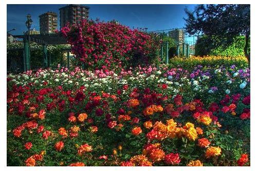 baixar primavera web jardins
