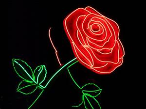 A Rose for You... | ...a tribute to the Oregon pioneer ...