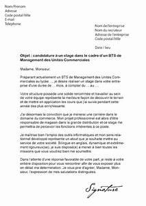 Exemple Lettre De Motivation Bts : lettre de motivation bts esf ~ Medecine-chirurgie-esthetiques.com Avis de Voitures