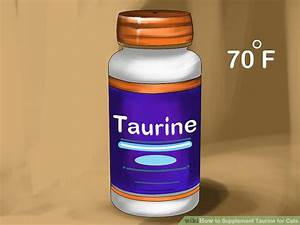 How To Supplement Taurine For Cats  10 Steps  With Pictures