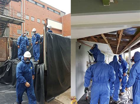 asbestos removal cairns precision concrete solutions