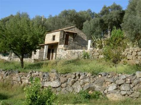 maison traditionnelle corse dans une oliveraie corse du sud homelidays