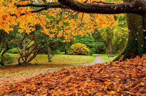 Stourhead in autumn - PentaxForums.com