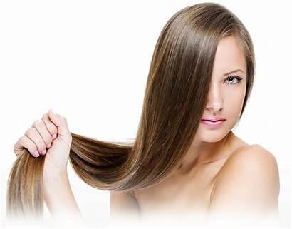 Salon Hair Brushing Transparent Blowdry Cut Spa
