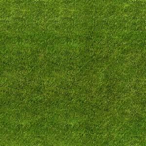 Grass Texture   SEAMLESS GRASS TEXTURE   Texture's ...