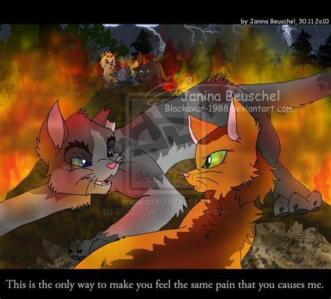 images  ashfur  squirrelflight