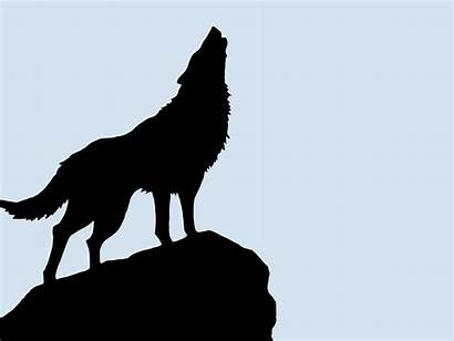 Wolf Silhouette Background Wolves Resolution Clipart Simple