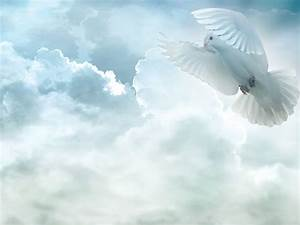 Holy Spirit Dove Pictures Images Photos Live HD Wallpaper ...