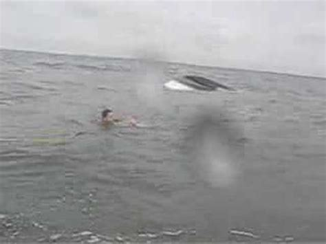 Boat Sinking Jersey by Coast Guard Rescues 3 From Capsized Boat New Jersey