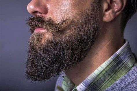 unbeatable long beard styles   man