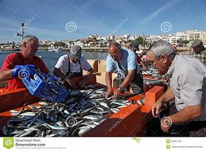 fish market lagos portugal