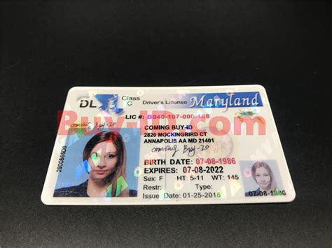 To begin the processes for an identification card, you will need to submit an electronic save. Maryland ID | Maryland State ID Card | Fake id maker - Buy-ID.com
