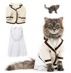 cat clothing trendy clothes for cats