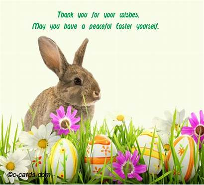 Bunny Thank Easter Hugs Happy Thanks Cards