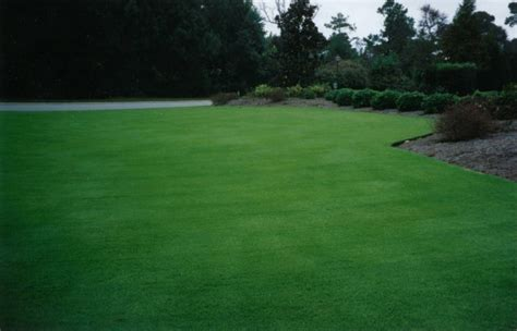 Mulch And Sod In Wilmingtonsuperior