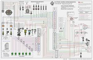 International S1900 Wiring Diagram  U2013 Amalgamagency Co