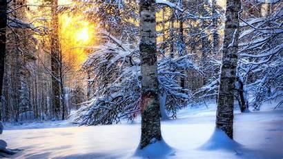 Winter Sun Wintersun Wallpapers Nature Wallpapertag