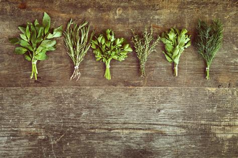 top  scientifically researched herbs  control blood