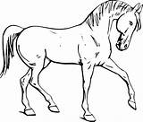 Horse Coloring Pages Flying Printable Getcolorings Horses sketch template