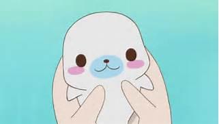 -kawaii-shop-and-baby-seal-seal-clipart-gif-tumblr 500-283 gif  Cute Baby Octopus Gif