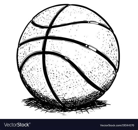 basketball ball hand drawing royalty  vector image