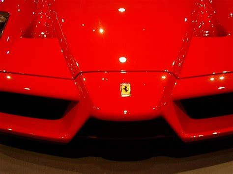 Ferrari's logo consists of a symbol of rampant stallion on the yellow rear ground usually with sf letters. farrari enzo shelby gt 500 eleanor concorde black gtr megane rs: 1976 Freightliner Classic heavy ...