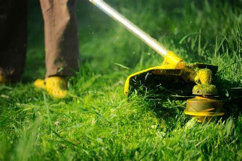 mowing  lawn   mower thriftyfun