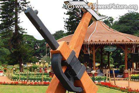 lalbagh flower show august  pictures independence day special