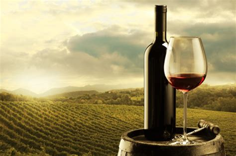 le canapé le plus cher du monde le vin le plus cher du monde