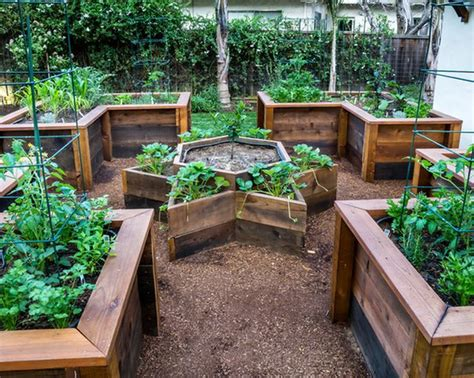 above ground garden 25 best ideas about above ground garden on