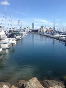 5 Page Website Design Golden Shore Rv Resort Long Beach California