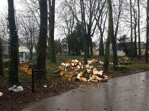 georges melies orly manif contre l 233 claircissement par abattage d arbres au