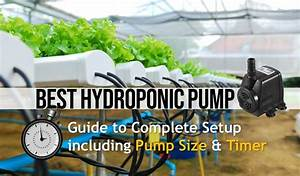 Best Water Pump For Hydroponic  U0026 Aquaponic  Size Guide