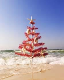 christmas tree on the beach san diego travel blog
