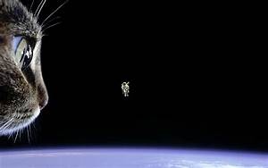 First untethered space walk : pics