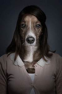 Underdog: How Dog Looks Like if They Dressed up Like Human ...