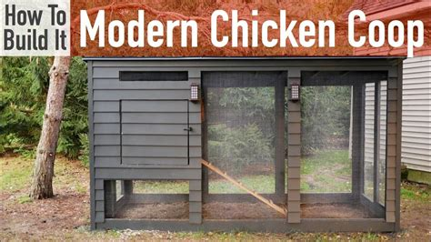 build  modern chicken coop youtube
