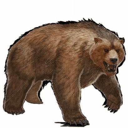 Dire Bear Ark Survival Evolved Aberrant