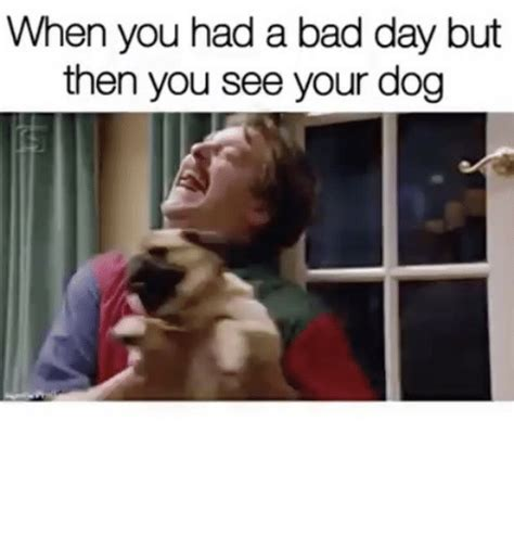 Bad Day Memes - 25 best memes about had a bad day had a bad day memes