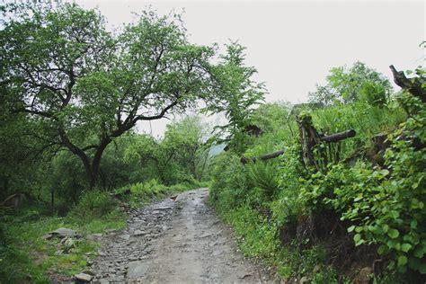 Відпочинок від міста село ЛумшориНовини«varosh» у