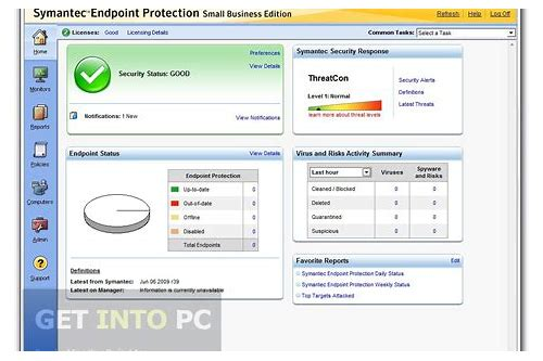 download update symantec endpoint protection 12