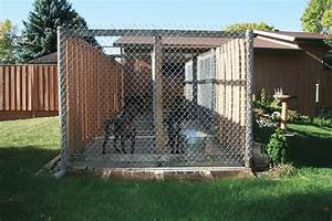 How to build the perfect dog kennel gun dog magazine for Dog run outdoor kennel house