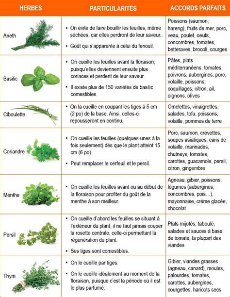 herbes aromatiques en cuisine les 25 meilleures idées concernant herbes aromatiques sur