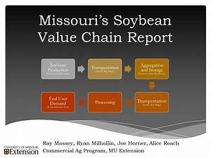 Missouri Soybean Value Chain Study Now Available ...