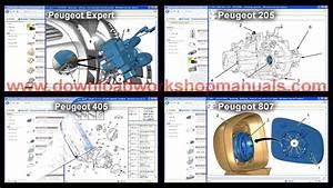 Bestseller  Peugeot 307 Repair Manual Free Download