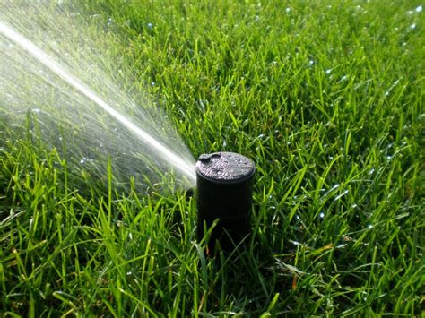 types of lawn sprinkler systems which sprinkler head is best for my irrigation system