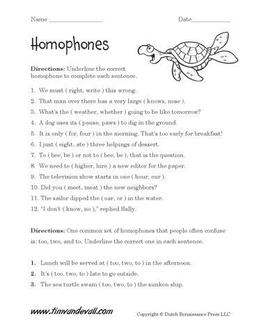 homophones worksheets homophones homonyms english grammar worksheets language arts